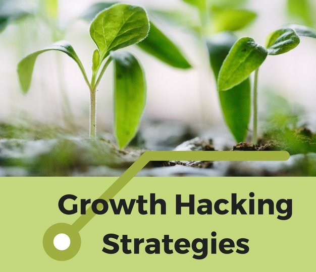 GrowthHackingStrategies