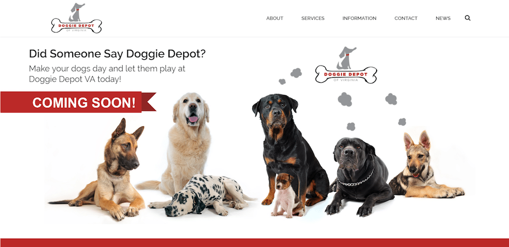 doggie depot of virginia website design winchester va