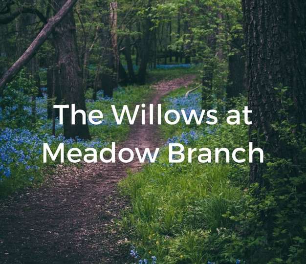 The Willows At Meadow Branch