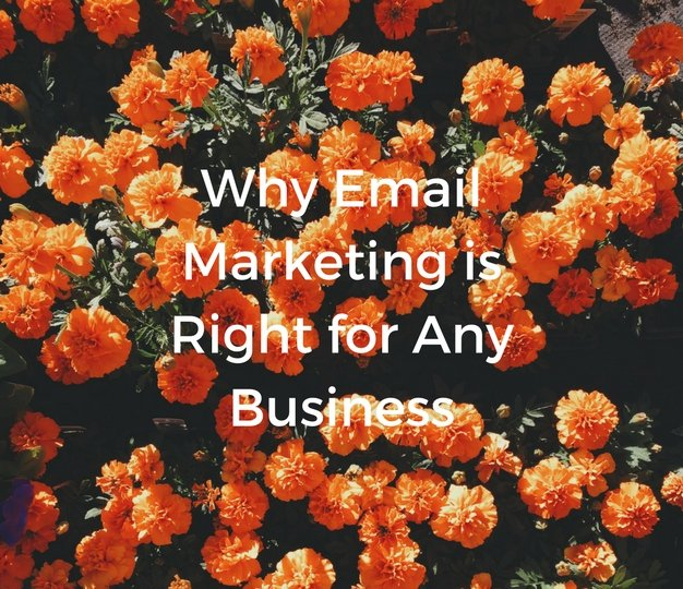 WhyEmailMarketingisRightforAnyBusiness