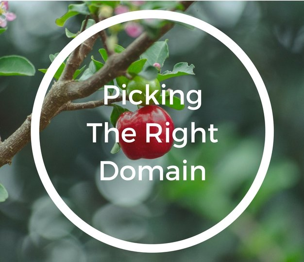 Picking The Right Domain