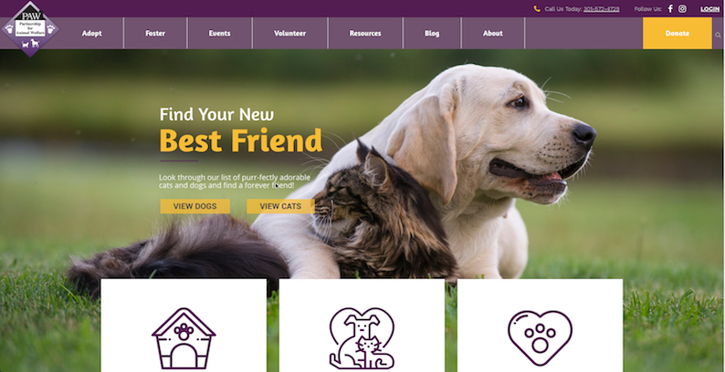 Partnership For Animal Welfare