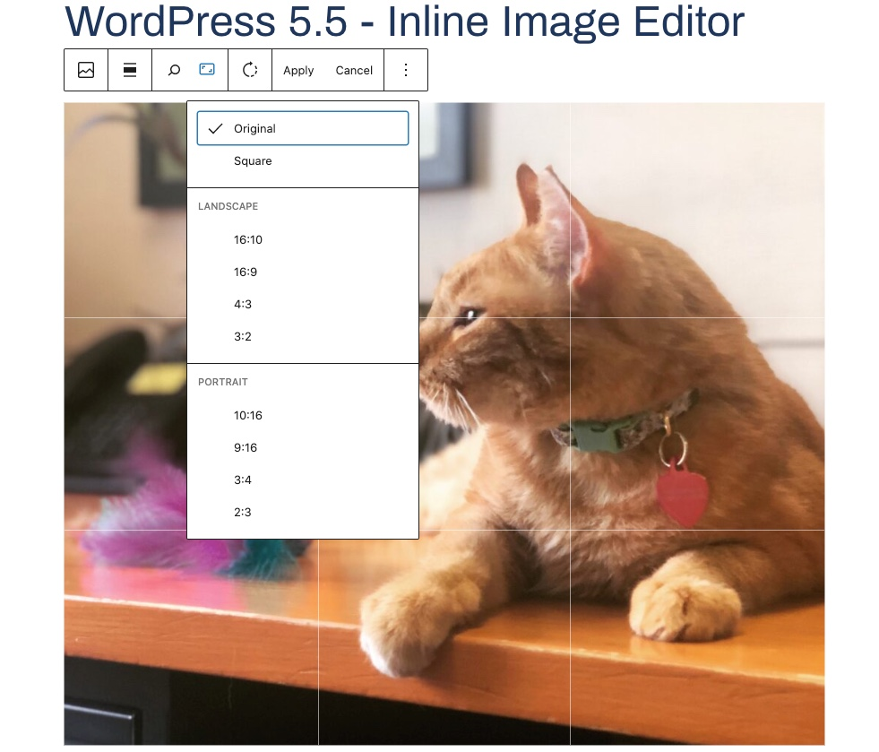 Wordpress inline image editor preview